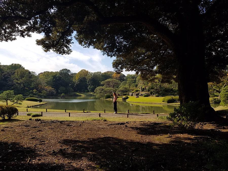 Tokyo e Kyoto con i bambini: il nostro Giappone in famiglia